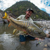 India - Golden Mahseer Fishing : Fly fishing for Golden Mahseer with The Himalayan Outback